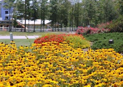 landscape management Indianapolis